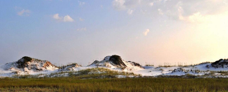 grayton-beach-sand-dunes